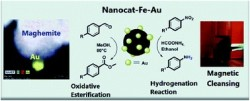 Maghemite-supported gold nanocatalyst for the oxidative esterification of aldehydes and the reduction of aromatic nitro compounds under mild conditions.
