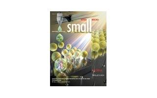 smll201670054-gra-0001 (1)